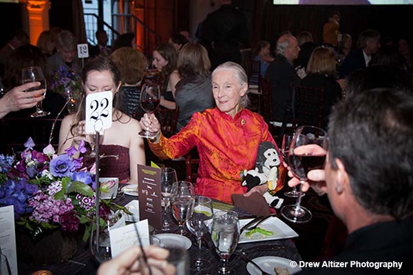 Jane Goodall's 80th Birthday Celebration