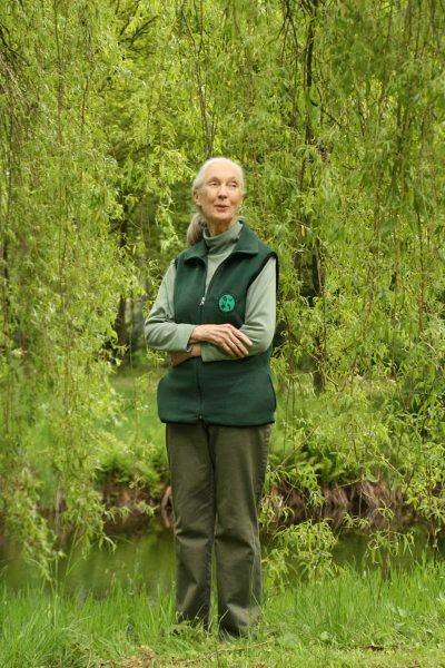 Dr. Jane Goodall's New Year 2015